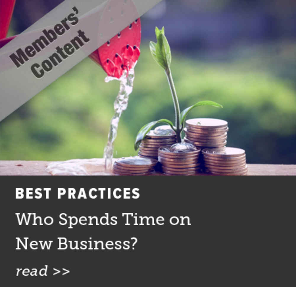 Who Spends Time on New Business?